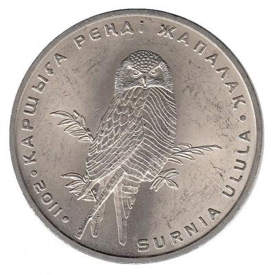 Ястребиная сова. Монета 50 тенге 2011 года. Казахстан